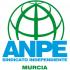 ANPE MURCIA - FORMACIÓN